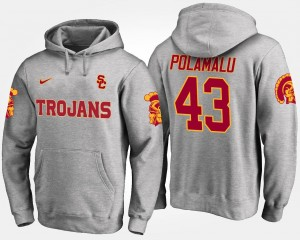 Troy Polamalu USC Trojans Hoodie #43 Gray Name and Number For Men's